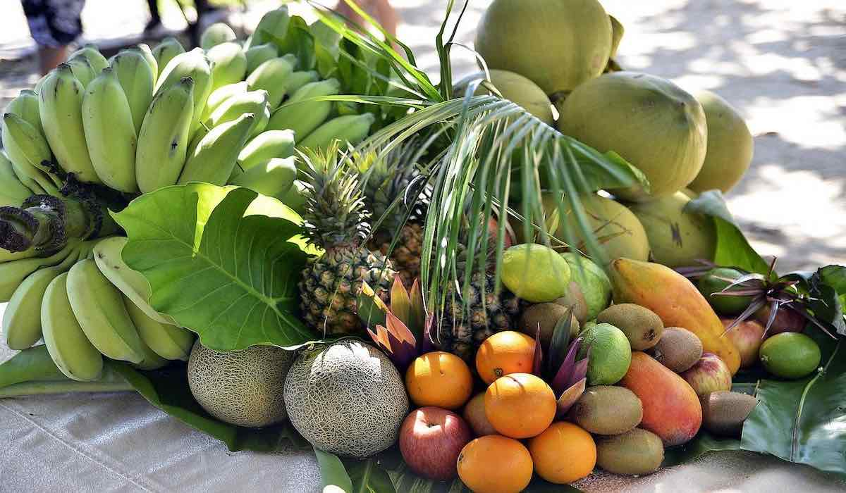 Variety of exotic fruits of South America