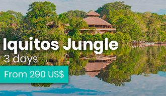 Iquitos Jungle tour howlanders