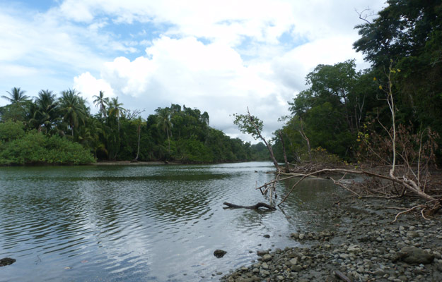 Corcovado National Park river mouth