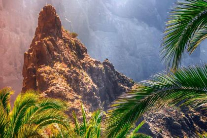 what to see and do in tenerife